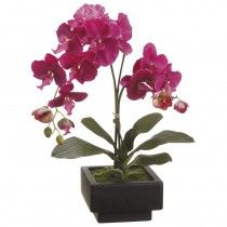 Gonville Orchids available at http://www.seniorfurnishings.com/