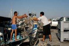 Tuna catching. #Paphos harbour.