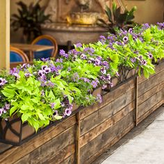 A low wall, topped by bright window boxes can bring desired privacy to a patio or outdoor cafe. This combination, 'Close Friends' adds definition and color to the areas it divides. Modern Landscape Design, Modern Landscaping, Backyard Landscaping, Landscaping Ideas, Residential Landscaping, Backyard Patio, Patio Ideas, Young House Love, Garden Ideas To Make