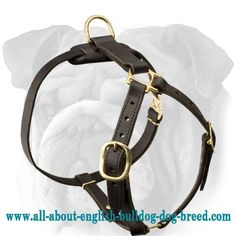 Super Lightweight #Adjustable #Leather #Dog #Harness for English Bulldog #Tracking Work $59.00 #englishbulldog #animals