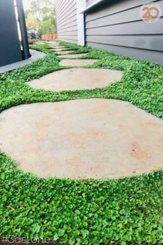 A lush forestlike walkway that is durable and easy-on-the-eye. You don't need a greenthumb to make your garden look great it's all about balance with natural elements #stones #steppingstones #bluestone #pathway #garden #walkway