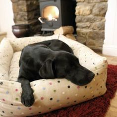 Hugo Hennie Luxury Combination Bolster Dog Bed
