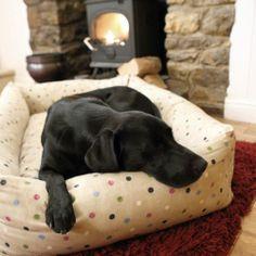 Hugo Hennie Luxury Combination Bolster Dog Bed