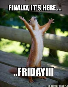 10 Yay For Friday Ideas Its Friday Quotes Friday Happy Friday #happy #christmas #excited #new #animated. 10 yay for friday ideas its friday