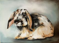 Basil the Bunny, one of a series by Penny titled  Farm Animal Series