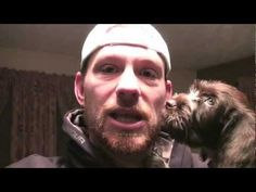 Puppy for Christmas Wirehaired Pointing Griffon - Cam - YouTube