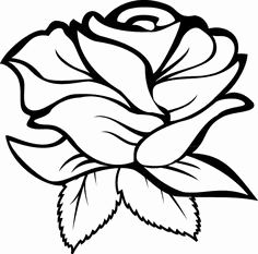 easy to draw sexiest rose | how to draw a rose step 6 | For details | Drawings, Art, Easy drawings