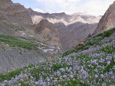 Ladakh, India  http://www.thrillophilia.com/ladakh.php