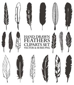 18 Hand Drawn Retro Feathers Illustration by seaquintdesign
