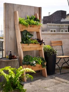Grow your own herbs and vegetables in compact outdoor spaces! Designed to resemble a rustic ladder, planting boxes are attached to a cedar frame.