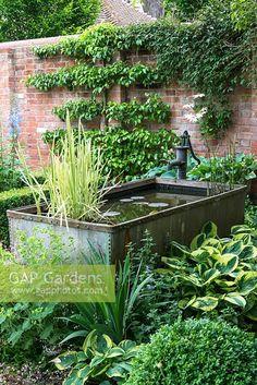 Ponds For Small Gardens, Small Ponds, Back Gardens, Garden Pond Design, Cottage Garden Design, Water Features In The Garden, Garden Features, Small Garden Plans, Shade Tolerant Plants