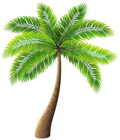 Palm Tree Silhouette PNG Clip Art Image Ideas For The