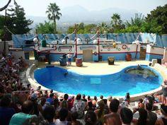 In Mundo Mar worden ook live shows gegeven.