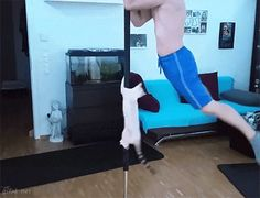 Warning: These 18 GIFs May Cause Uncontrollable Giggling #refinery29  http://www.refinery29.com/2016/01/100342/funny-gifs#slide-18  It's always better to work out with a friend. ...