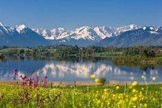 Riegsee mit Wettersteingebirge und Zugspitze im Frühling, Oberbayern, Deutschland