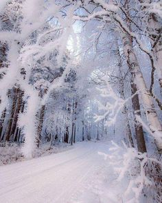 Road through the magical forest ~ Lapua, Finland. Photo by – All Pictures I Love Snow, I Love Winter, Winter Photography, Nature Photography, Poetry Photography, Travel Photography, Levitation Photography, Exposure Photography, Canon Photography