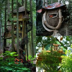 Extreme Tree Houses   Extreme Tree Houses - three level and wicker