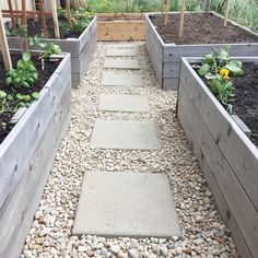 """113 Likes, 10 Comments - Alissa (@33shadesofgreen) on Instagram: """"It's nothing fancy, but I finally added small pebbles around the stepping stones in the garden.…"""""""
