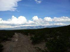 Desierto. San Luis Potosí