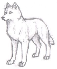 New art sketches easy wolf Ideas Pencil Drawing Tutorials, Pencil Drawings, Pencil Art, Drawing Sketches, Art Sketches, Drawing Drawing, Animal Sketches Easy, Drawing Step, Awesome Sketches