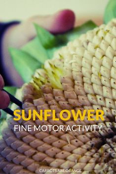 Take the Sunflower learning a bit further. Kids love this activity & it works their fine motor skills.