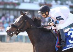 Flay Mignon, with Paco Lopez aboard, wins the second stakes of her career in the Jersey Juvenile. Horse Racing, Two By Two, Career, Horses, Animals, Animales, Carrera, Animaux, Horse