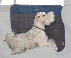 Dog About Vehicle Door Protector by Classic Accessories, http://www.amazon.com/dp/B003V0JQJW/ref=cm_sw_r_pi_dp_z0Bdrb0QX5B9R