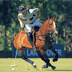 David #Stirling - #Ayala Polo Team #ELLERSTON, VIGENTE CAMPEÓN, DEBUTÓ CON TRIUNFO  EN LA COPA DE PLATA #SILEX DE ALTO HANDICAP.  También ganaron esta étapa RH Polo y Ayala Polo Team. #Polo #PoloSotogrande