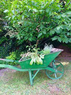 Schubkarre Vintage bepflanzen