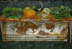 Junkaholics Unanimous: Salvaged Antique Crown Molding Planter and Window Box