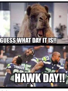 10600d984e8bf6b450624fe79548ce47 seahawks football seattle seahawks seattle seahawks! seattle seahawks pinterest seahawks,Seahawks Game Day Meme