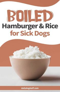 Boiled Hamburger & Rice for Sick Dogs,. (to stop diarrhea) Soup For Sick, Hamburger And Rice Recipes, Bland Diet For Dogs, Diarrhea In Dogs, Diarrhea Remedies For Dogs, Dog Care Tips, Pet Tips, Pet Care, Puppy Care
