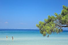Karidi beach, Magical Halkidiki,Northern Greece ( I'm more used to THIS color of the sea , its crystal clear waters and soft white sands )
