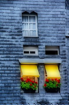 yellow awnings