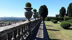 regram @trutzy #castelloditorrealfina #torrealfina #Acquapendente #viterbo #lazio #italia