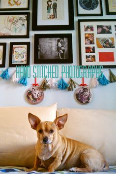 Hand Embroidery on Photographs DIY #inveritasest