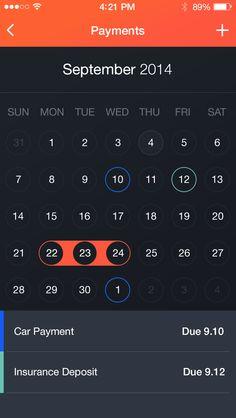 Money Manager iOS Screens