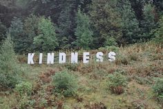 kindness. words to live by. grass hill. spring