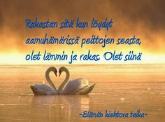 Erilaisen mummin uusi elämä. Naurua, kyyneliä, kuvia, runoja. Cool Words, Wise Words, Finnish Words, Funny Good Morning Quotes, Say Something Nice, Life Lyrics, Just Do It, Love You, Maybe One Day
