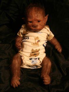 Ezra, werepups .com - this is a high end doll?
