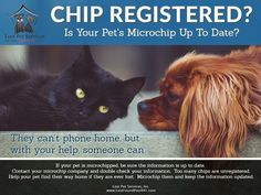 Via our friends at Lost Pet Services, Inc.  Too often we are faced with found pets that are microchipped but the chips are not registered. Please be sure to update your chip information or to register it. We can help.