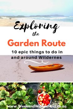 these are my top 10 things to do in the Garden Route of South Africa