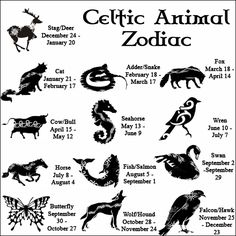The Celtic Animal Zodiac. The Celts honored the rhythms of Nature, and observed different flavors of their environment according to the season. Like our Native American kin, the full moon in each...