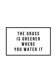 Grass is Greener – WildeCherry