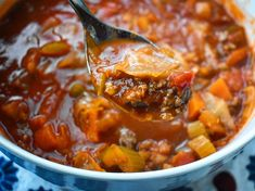 Ground Bison and Cabbage Soup