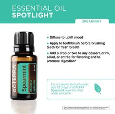 Here's a daily dose of dōTERRA Essential Oil's benefits, use a drop Spearmint with water for an upset stomach or inhale to uplift mood. It may also be used when making homemade toothpaste or just add a drop to your toothbrush.