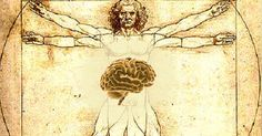 The Mind Body Brain Axis