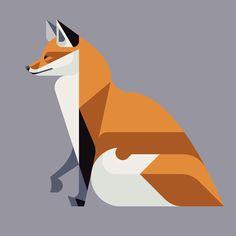 Red Fox, Flora and Fauna series, Mammals edition- Josh Brill