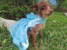 Vestido Elsa Coisas de Marrie fabricação própria