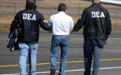 DEA Appears To Stand Down On Gateway Drug Theory Cannabis activists are celebrating yet another victory in the War on Drugs. This week, the DEA's website removed a 40+ page publication that contained misinformation about marijuana – including the...